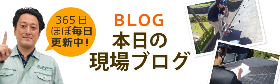 取手市、守谷市、利根町やその周辺エリア、その他地域のブログ